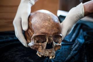 Třicet tisíc let stará lebka Homo sapiens.