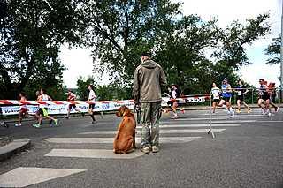 marathon01