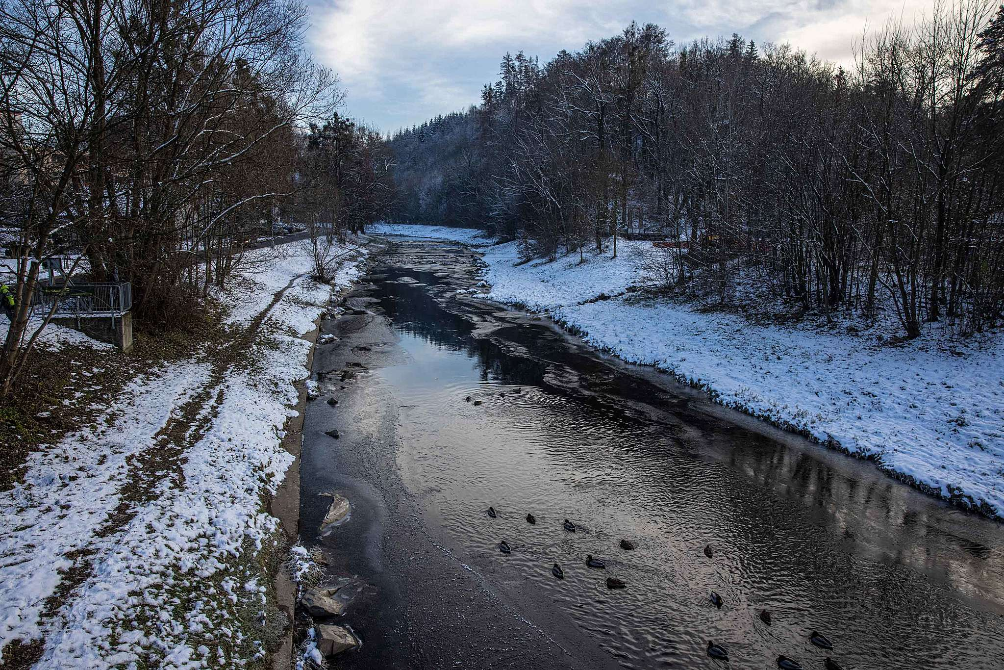 Otrávená řeka. Proč Deza zatajila havárii aúřady mlčí?